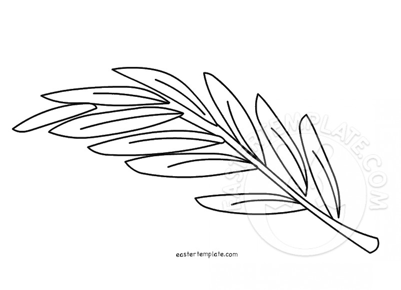 Olive Branch Coloring Page Easter Template
